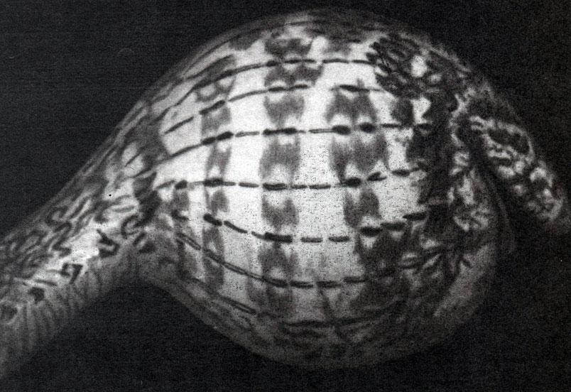 Сосет заглатывая яйца 6 фотография
